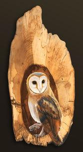 Dapper Owly