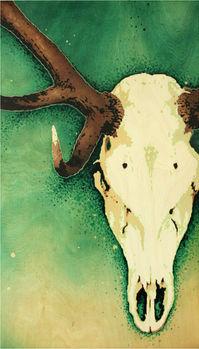 Red Deer Skull