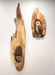 Raccoon and Owl Pair