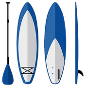 paddle-board-equipment-free-vector.png