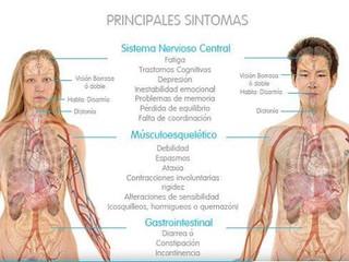 Principales Síntomas