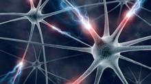 El trasplante autólogo de médula ósea estabiliza la esclerosis múltiple y reduce la discapacidad