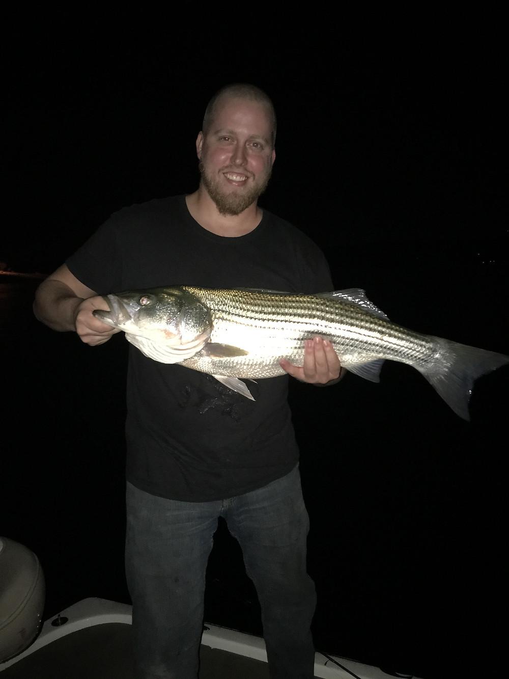 Lake Travis Striped Bass
