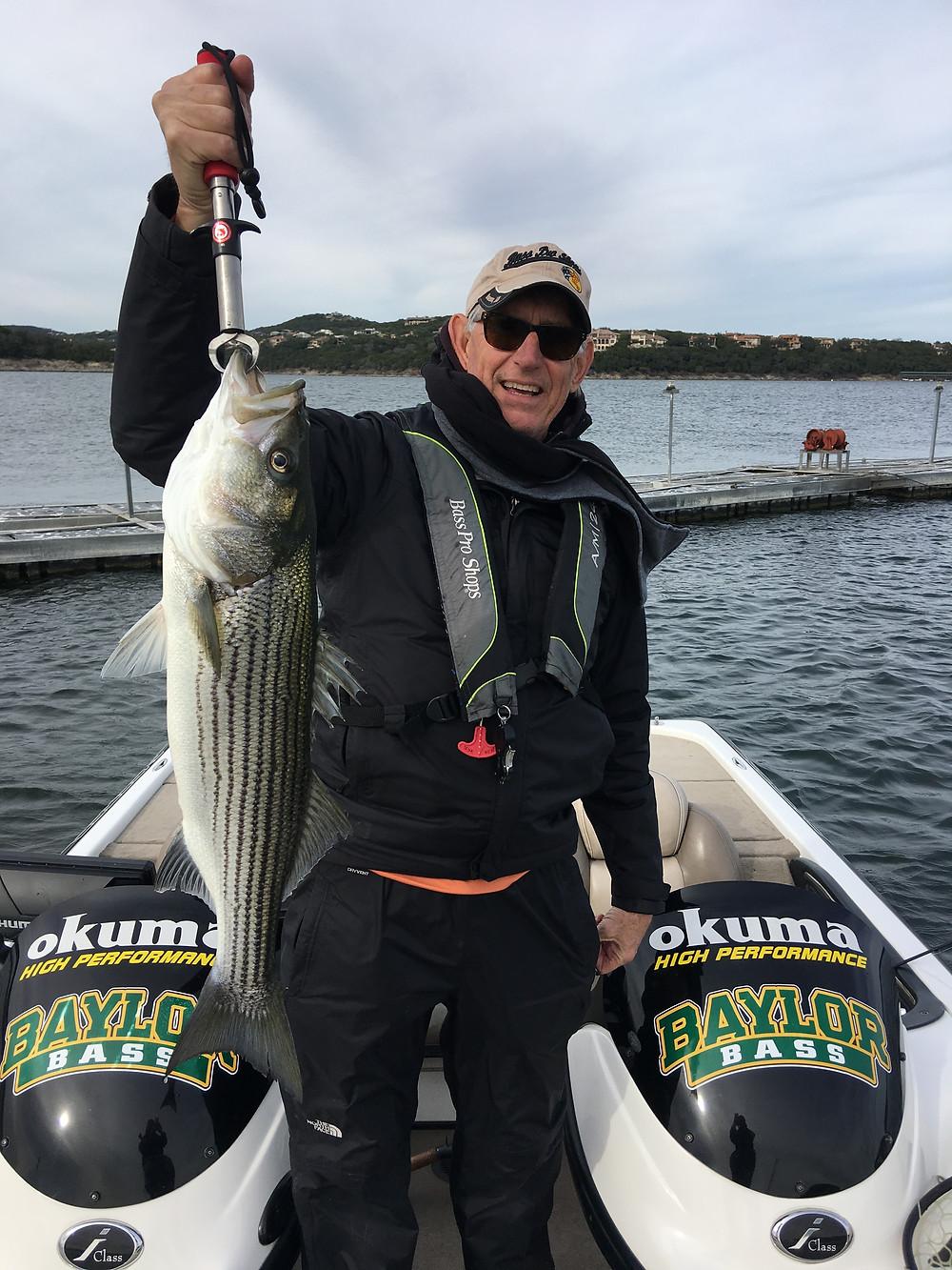 Lake Travis Striper