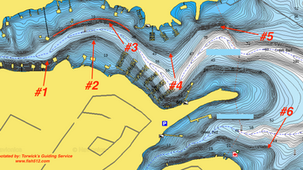Breakdown of What I Look For in a Fishing Spot During the Winter- Lake Travis, Austin, TX