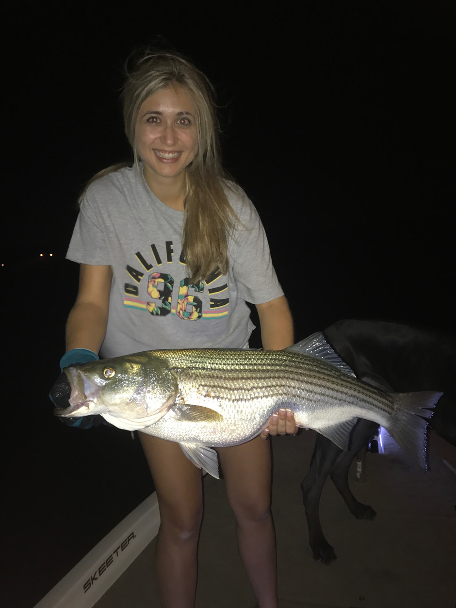 Big Striper Still Biting!