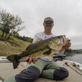 Big Springtime Bed Fish Caught on Lake Travis