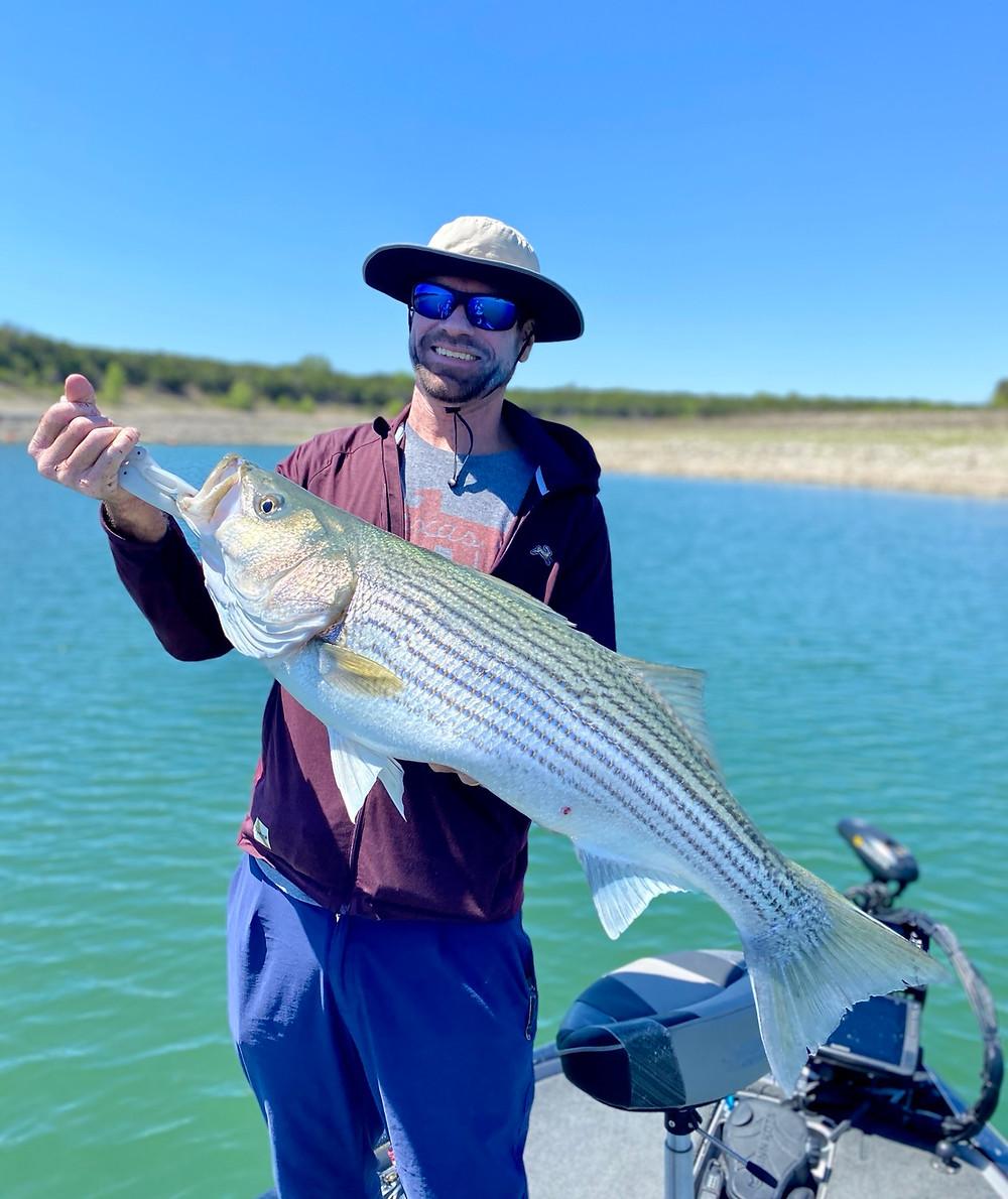 Lake Travis Striper aka Striped bass