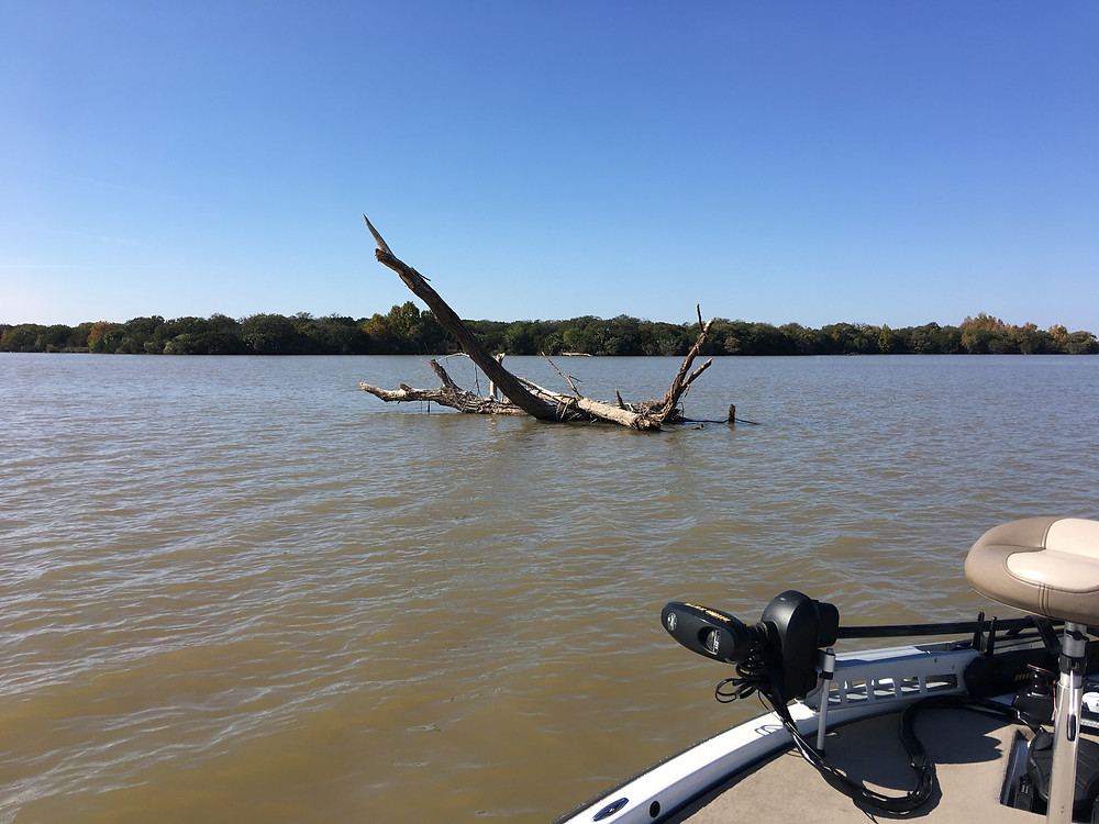 Lake LBJ Flood Debris
