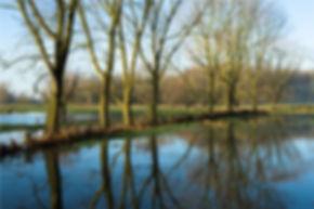 MK_waterengroen.jpg
