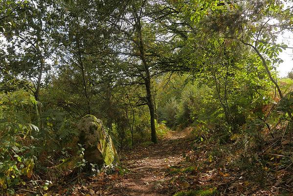10. Sentier du Larron sentiers et minime