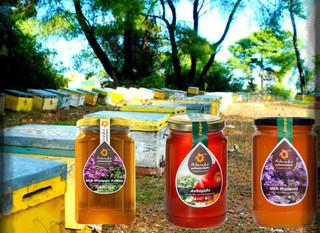 Τα μέλια της Άνοιξης..