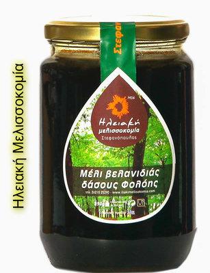 Μέλι βελανιδιάς δάσους