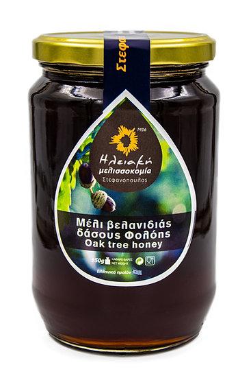 Μέλι βελανιδιάς δάσους Φολόης