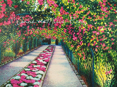 "Rose Garden at Point Defiance 11""x14"" Matted Print"