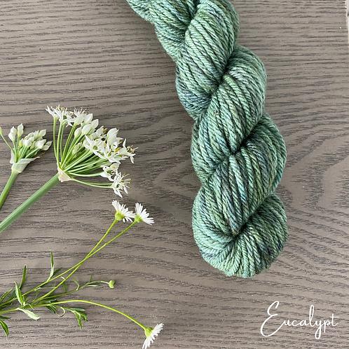EUCALYPT White Gum Wool 100g