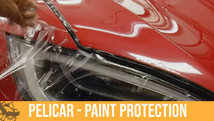 Paint Protection for Your Car!
