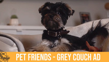 Grey Couch Facebook Ad