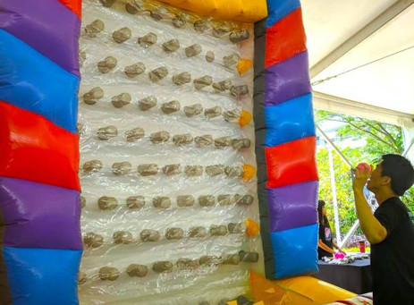 Plinko-Inflatable-Carnival-Game.jpg