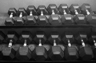 A set of dumbells sitting on racks