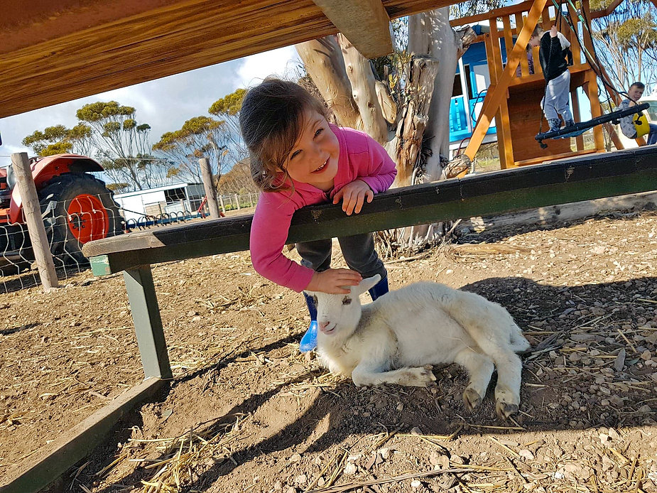 Child with baby Lamb at PEGS PLACE, Port Victoria. Farmstay by the Beach. Pegs Place. Yorke Peninsula