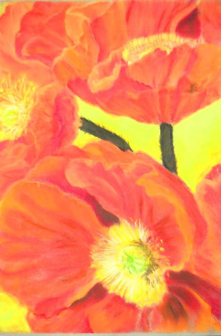CA Poppies_pastel_17X23.jpg