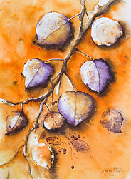 Aparna Pottabathni_The onset of Autumn #