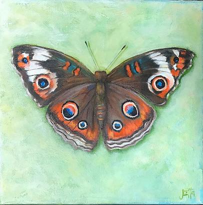 Buckeye Butterfly.png