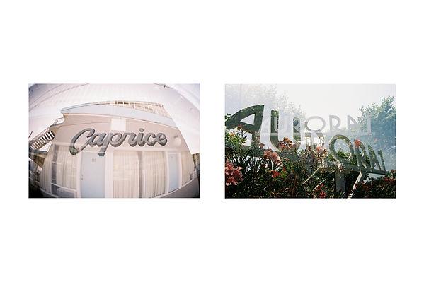 fantastic fonts (1).jpg