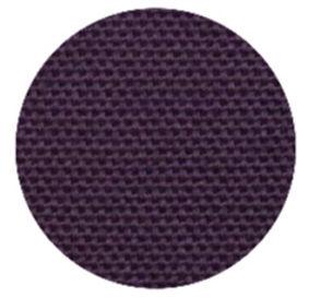 PurplePlumeria (1).jpg