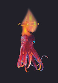 lava octopus.A2.60$.jpg