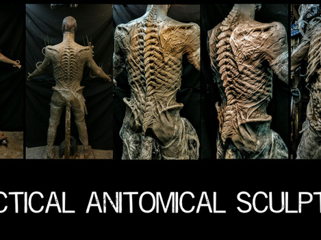 AHPracticalSculptAnatomy.jpg
