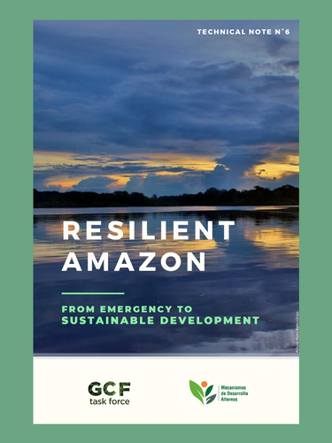 Resilient Amazon: From Emergency to Susta