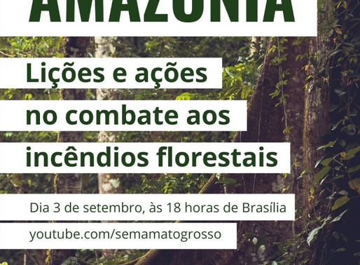 Dialogues for the Amazon: Brazilian Environmental Secretaries on the Fight Against Forest Fires