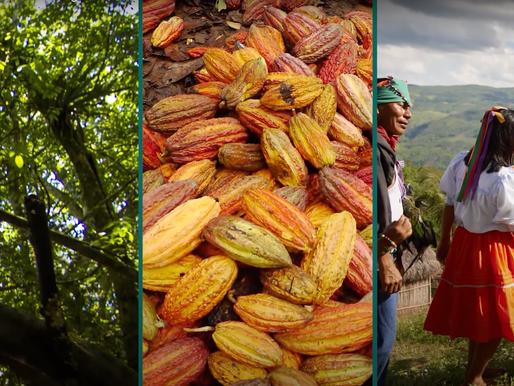 Ver el vídeo: Programa de Incentivos Regionales en Perú [ES]