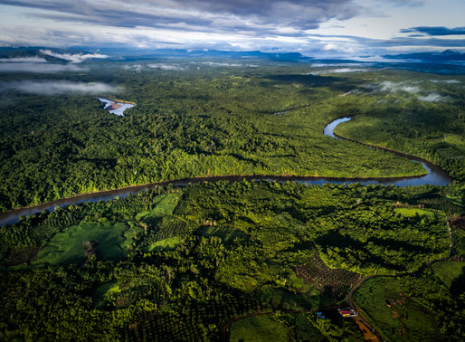 Indonesian provinces to develop plans to distribute benefits from reducing deforestation
