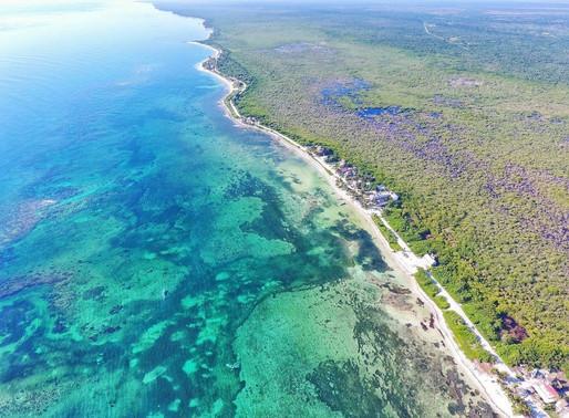 Enfoques Jurisdiccionales: Quintana Roo