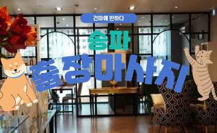 송파 틴트홈타이 출장 아로마 타이 마사지