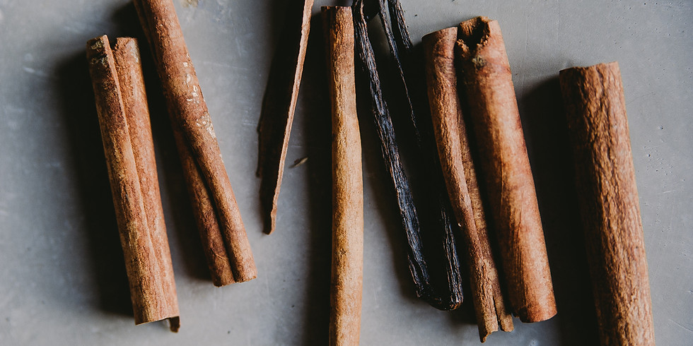 Cinnamon Ornaments - Seedlings