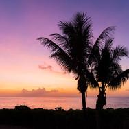 Christmas Island Photography Tours, Christmas Island Photography, Kirsty Faulkner Photography,