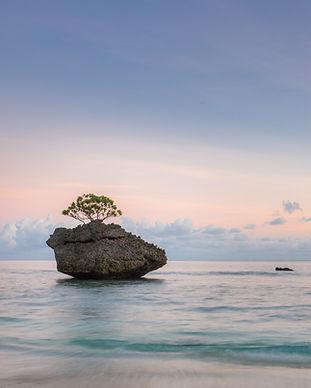 Cove Rock Sunrise.jpg