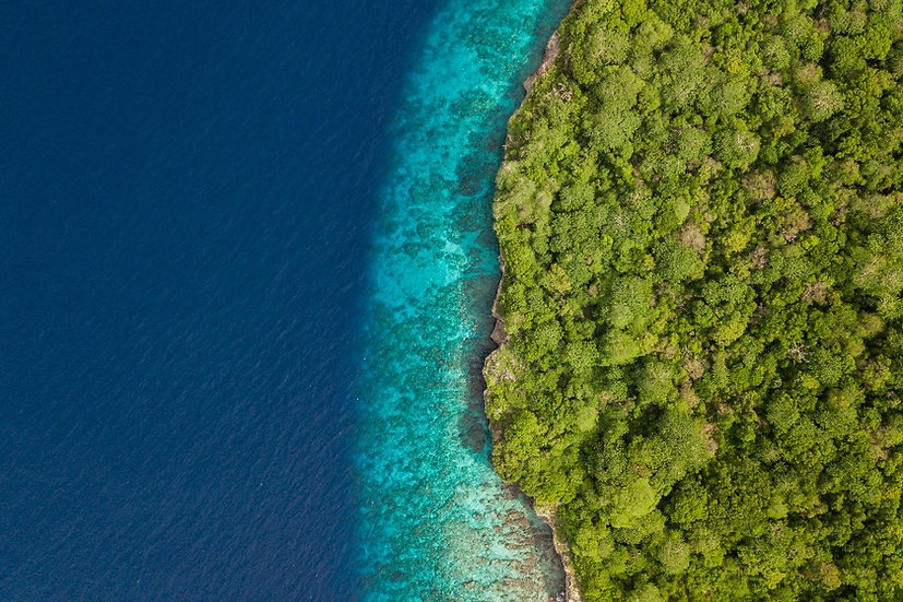 Christmas Island Colours