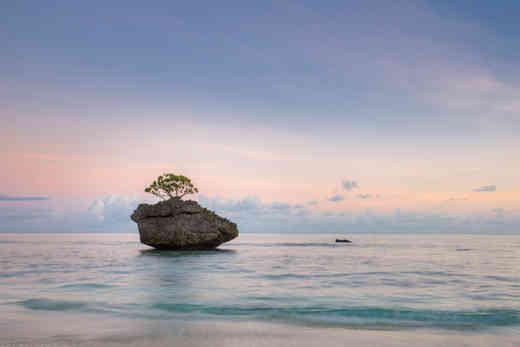 Christmas Island Red Crabs, Christmas Island Photography Tours, Christmas Island Photographer, \