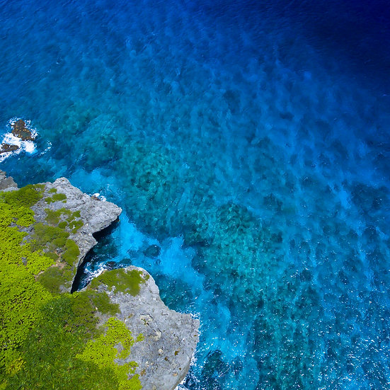 Reef Drone (square)