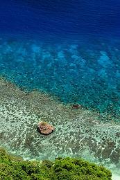Cove Reef