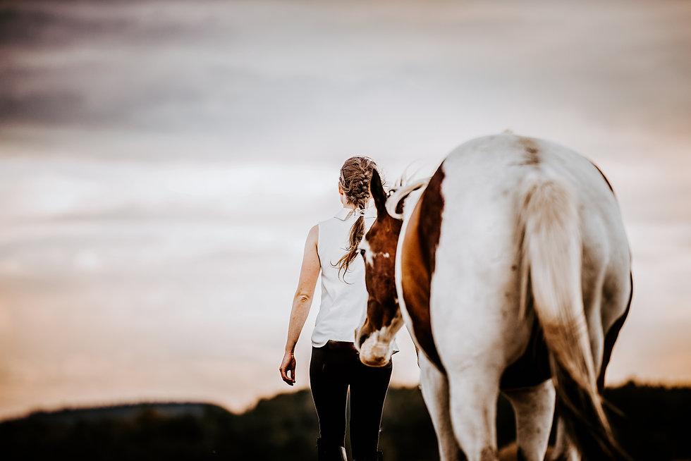 Pferd und Mensch als Weggefährten.jpg