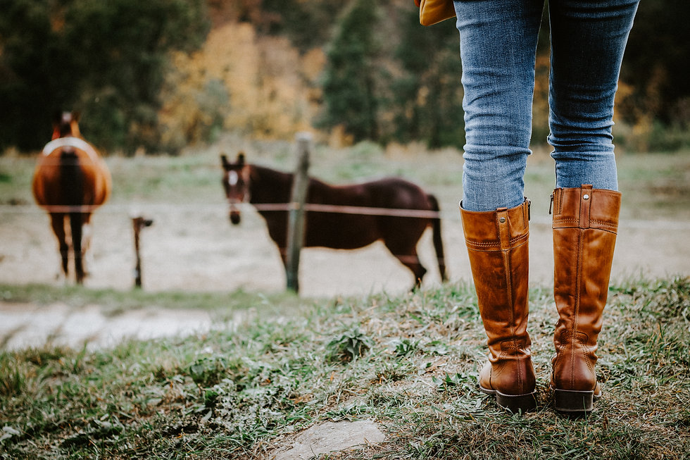 Entwicklungsreise mit Pferd