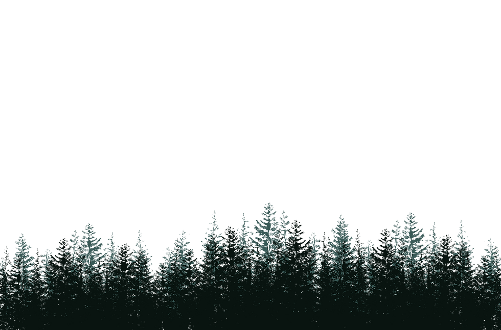 FOREST_edited.png