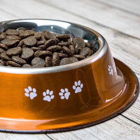 Dog Food-6-2.jpg