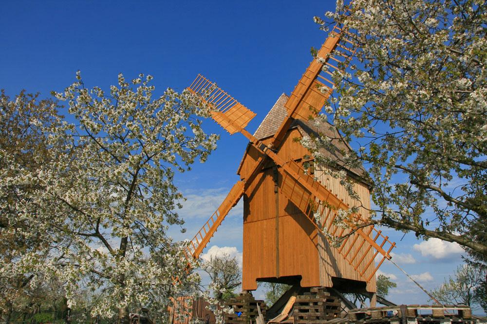 Bockwindmühle Lumpzig